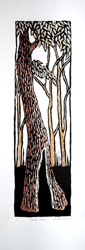 tasmanian tree-1