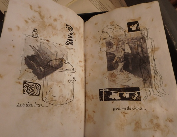 An Artist Book domestic page