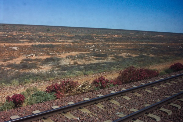 Indian Pacific Window 2