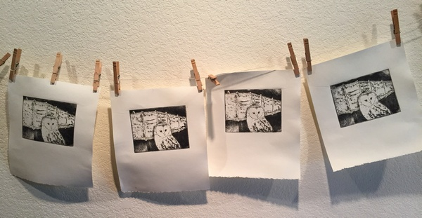 Owl etchings on line