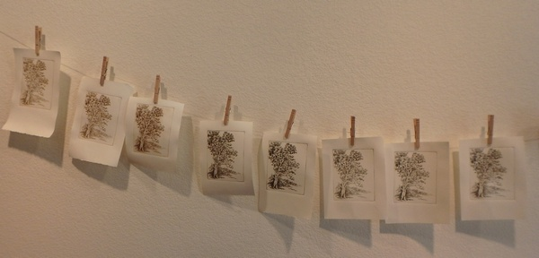 gum tree etching pages